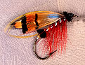 Durham Ranger, tied by Don Bastian